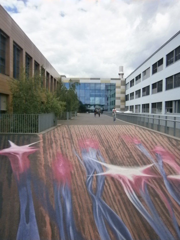 My department-Sciences de la Vie-and its neuron floor-mural